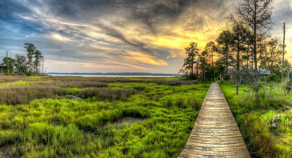 Boardwalk at the lake.jpg