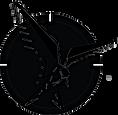 TS 4C Logo. png.png