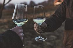 Weingut Söll