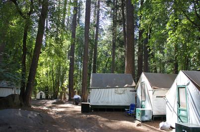 Yosemite National Park (28).jpg