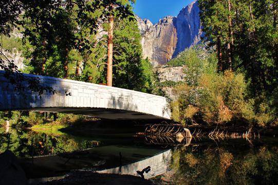 Yosemite National Park (26).jpg