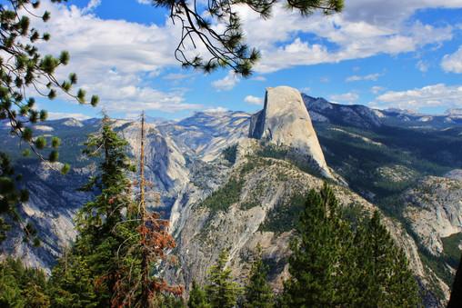 Yosemite National Park (6).jpg