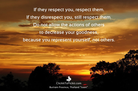 Respect Yourself,  Respect Them