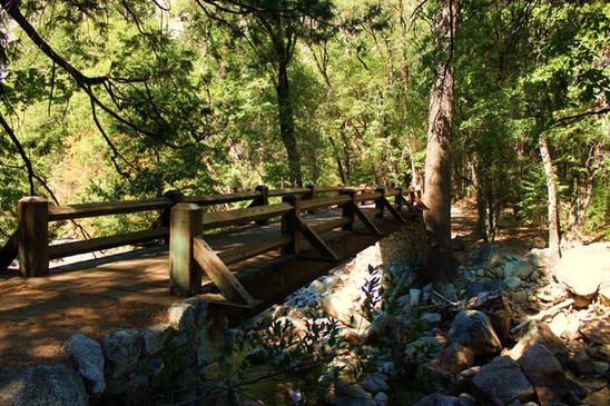 Yosemite National Park (30).jpg