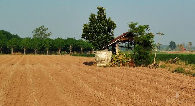 Freshly plowed and Disked Field