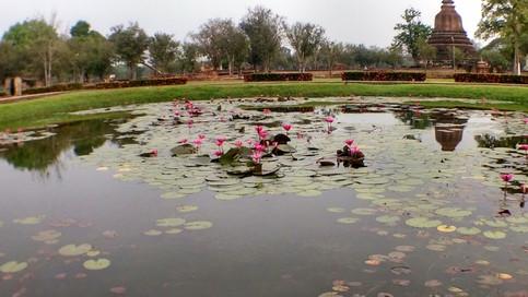 Suhkothai Historical Park Thailand