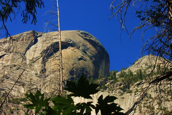 Yosemite National Park (31).jpg