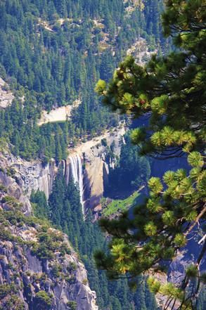 Yosemite National Park (19).jpg