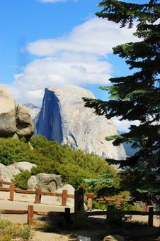Yosemite National Park (22).jpg