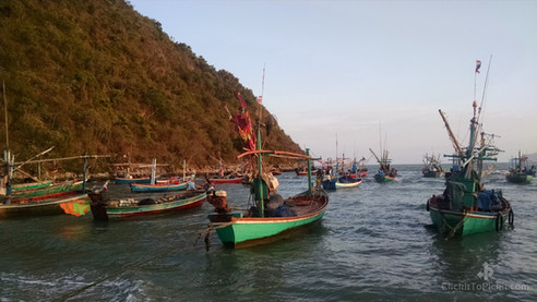 Pak Nam Pran Fishing Boats