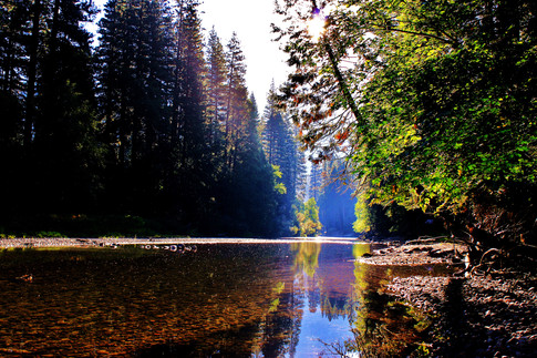 Yosemite National Park (24).jpg