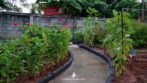 Kens Thai Garden Oct 4, 2018 Walkway.jpg