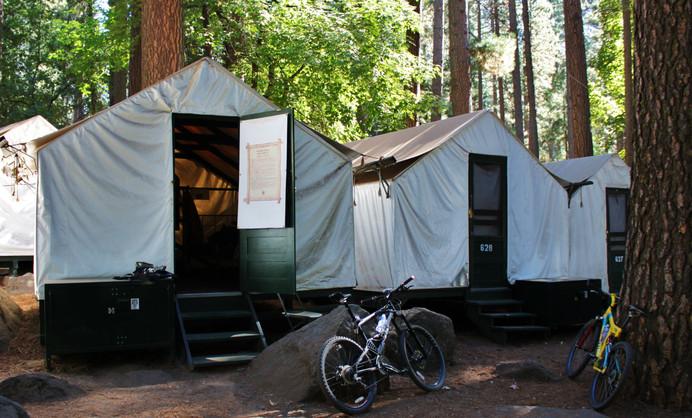 Yosemite National Park (27).jpg