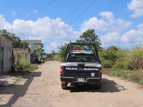 Incertidumbre por crimen masivo de perros en colonia tuxtleca