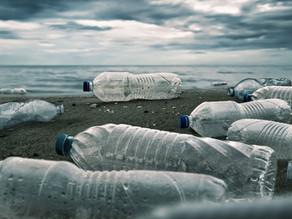 Científicos alemanes, más cerca de degradar plástico de poliuretano