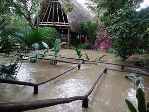 Bajo el agua, centros ecoturísticos de Montes Azules