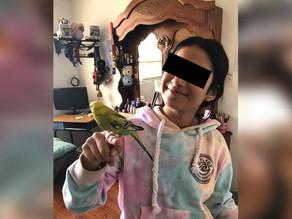 Piden justicia para Ana Paola, menor asesinada en Sonora