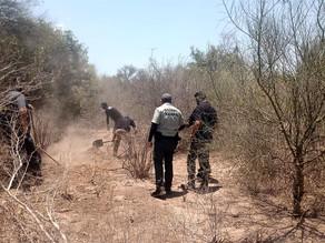Al menos 11 asesinatos en 24 horas en Zacatecas