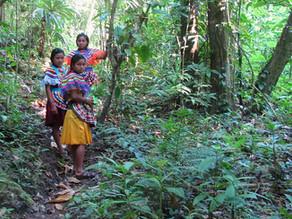 Al menos siete comunidades de la Selva se han visto afectadas por los bloqueos de Oxchuc
