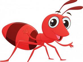 Cuento infantil:la aventura de la hormiguita Tita