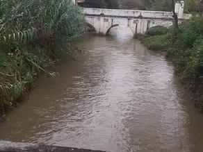 """Monitorea PC niveles de ríos y emite recomendaciones por tormenta """"Iota"""""""
