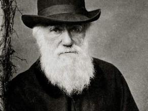 Encuentran fósiles que desentrañan el misterio que Darwin no pudo resolver