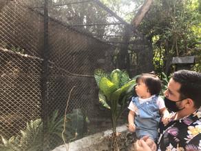 La aventura de ser mamá: La primera visita al zoológico