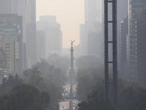 Tiene México numerosos problemas con el medio ambiente