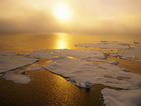 "Efectos a largo plazo por calentamiento son ""imprevisibles"""