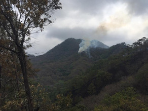 Llegó Chiapas a casi 20 mil hectáreas quemadas