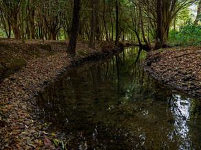La falta de infraestructura limita el acceso al agua en Chiapas