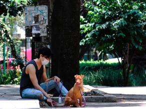 México notifica 610.957 casos y contabiliza 65.816 muertos por COVID-19