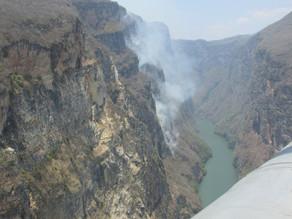 Chiapas, la cuarta entidad con más hectáreas quemadas