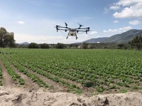 Drones útiles para la agricultura
