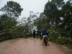 La madera tumbada por los huracanes en Nicaragua: ¿para afectados o explotadores?