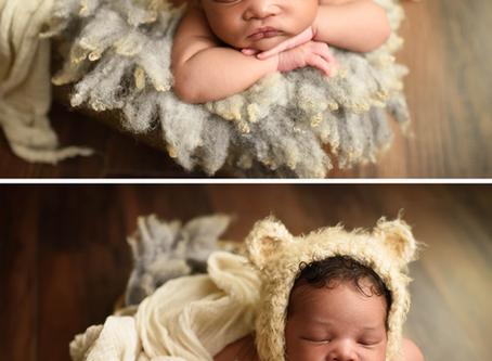 Northern Virginia Newborn Photographer   Austin