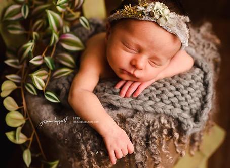 Saylah | Northern Virginia Newborn Photographer