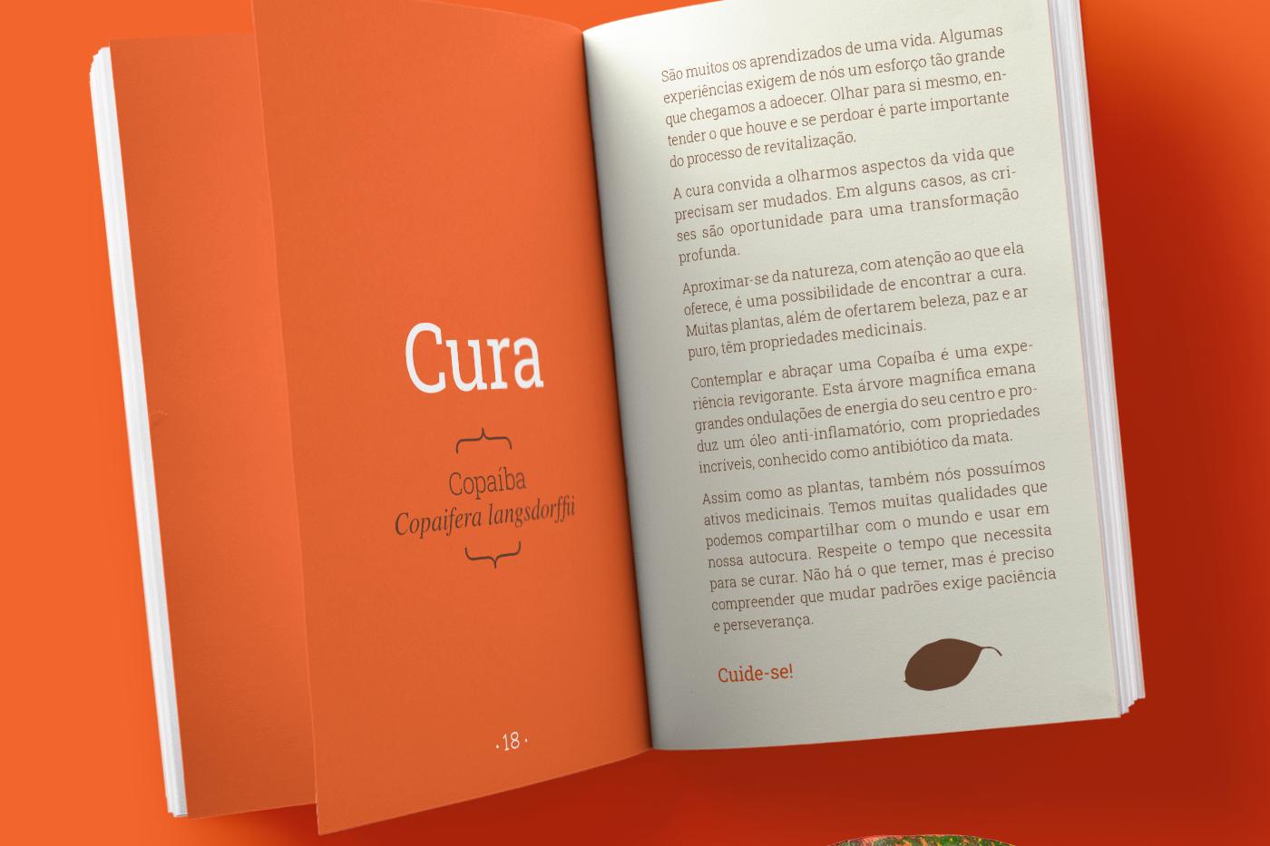 livro_dentro_4x4_laranja.png