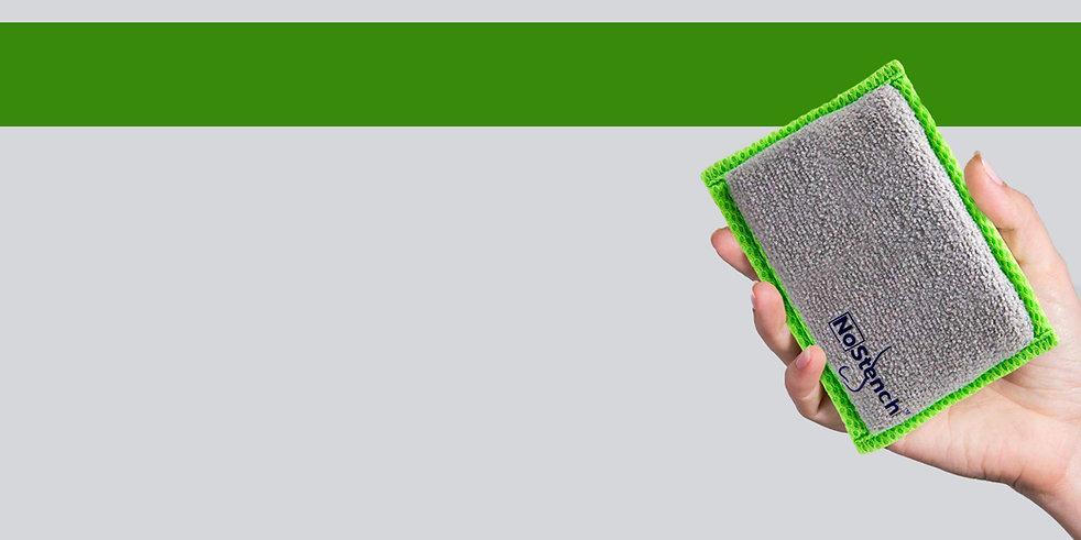 hand holding sponge.jpg