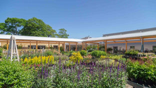 Beetham Nurseries makes it into the Sunday Times 'UK's Best Garden Centres' List