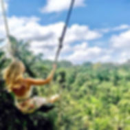 jungle swing 11.jpg