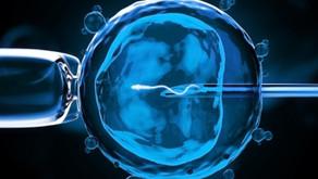 Novos tempos: entenda o papel da reprodução assistida na sociedade