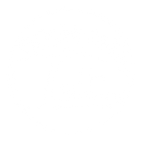 shebeen white logo.png
