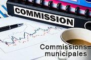 commissions municipales, extra-municipales, syndicats mixtes, communauté de communes Grand Avignon