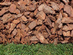 nugget-bark-2-300x225.jpg