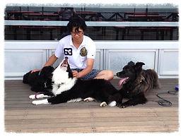 湘南ドッグトレーニング 鎌倉ドッグトレーニング  dogtrainig
