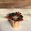 """Thumbnail: Wintergreen - 4"""""""