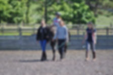 pony and rider session