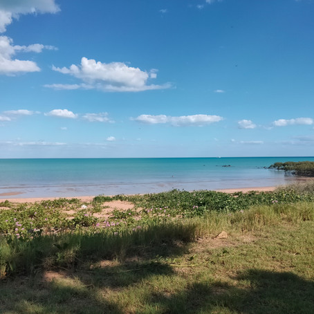 Down the west coast -Broome