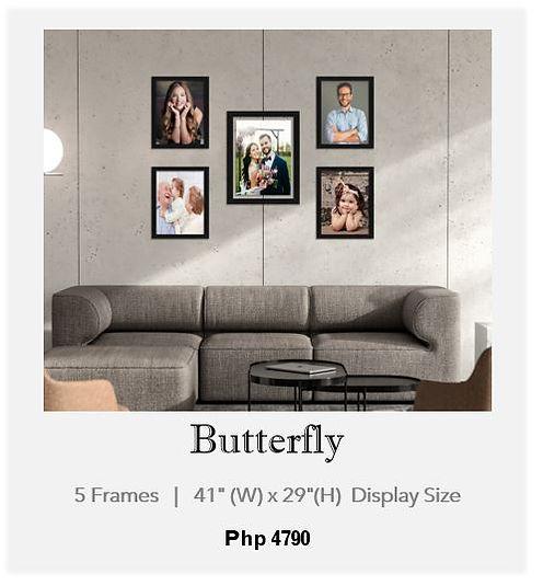 1 Butterfly.JPG